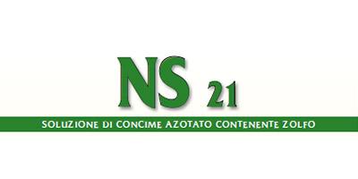 NS 21
